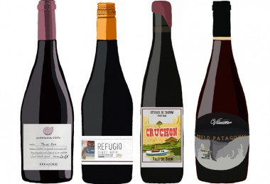 los mejores pinot
