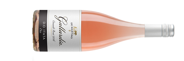 GALLARDIA-CINSAULT-ROSE-2016