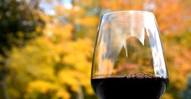 wine-sunlight-morning-glass-reflection-autumn-86768ok-pxhere