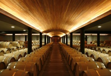 1st Year Barrel Cellar. Clos Apalta, Chile. Part of Casa Lapostolle, Santa Cruz, Colchagua Valley, Chile